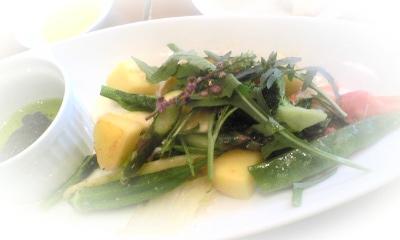 温野菜サラダランチ