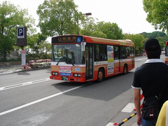 DSC06344.jpg