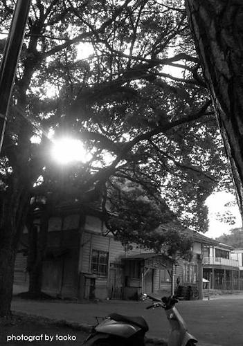 photo113.jpg