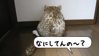20080516_163537.jpg