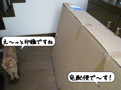 20080701_220628.jpg
