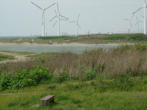 DSCN7204風力発電