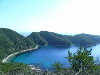 知々井岬1