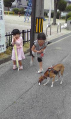めいっこー (2)