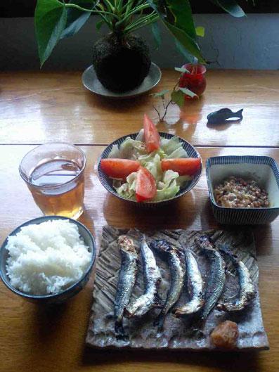 貧民レシピー (8)