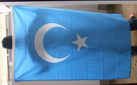 ウイグルの東トルキスタン国旗