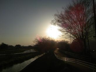 200507焼津夕陽