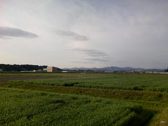 200524菊川風景