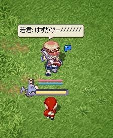 hazukapi-.jpg