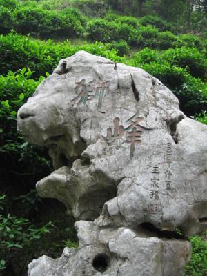IMG_2372_convert_20080705192532獅峰岩