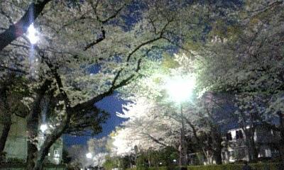 080402_三ツ沢公園