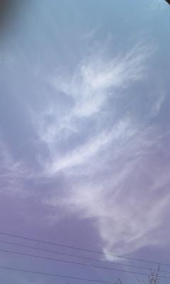 080229_天使