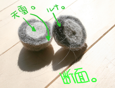 2008031504.jpg