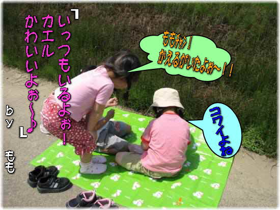 IMG_6136-1.jpg