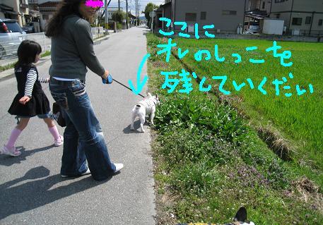 2008033114.jpg