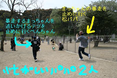 2008041305.jpg