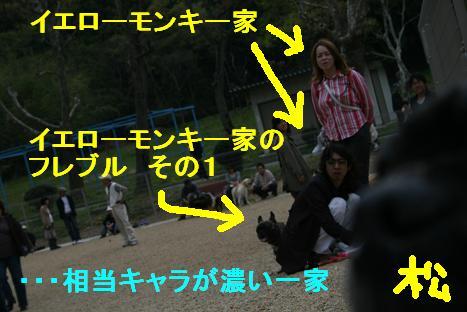 2008041329.jpg