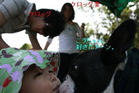 20080427110.jpg