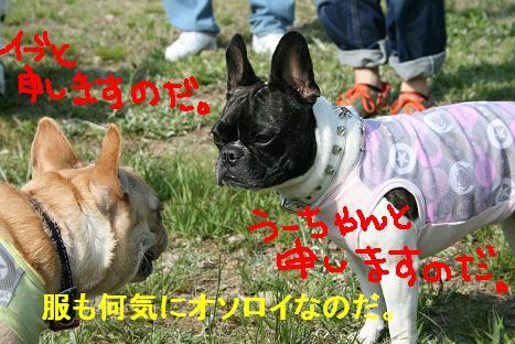 2008042759.jpg