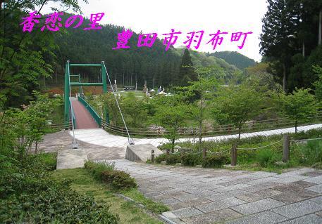 2008050110.jpg