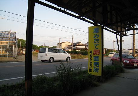 2008050329.jpg