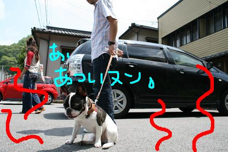 2008072106.jpg