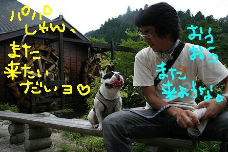 2008072192.jpg