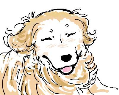 snap_lookblog_200856101642.jpg