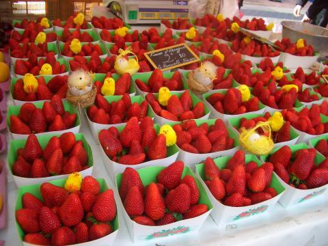 ヒヨコとイチゴの関係は。