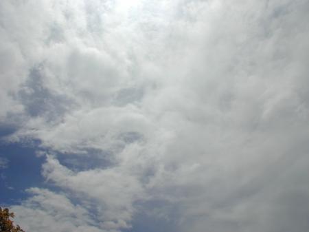 敷島のお天気