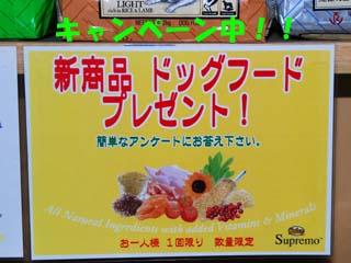 DSC_0157のコピー