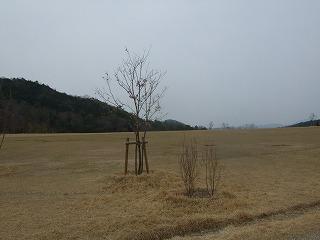 2008_0402arimafuji0011.jpg