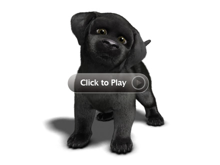 black_lab_player_overlay_440x330.jpg