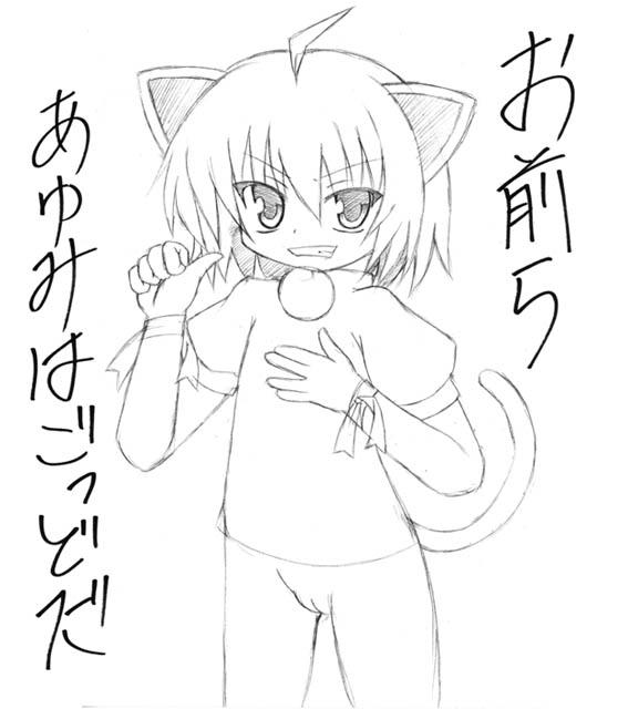 080524_kyouka.jpg