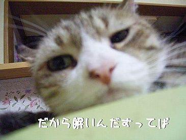 fu-chan-nemui-2.jpg