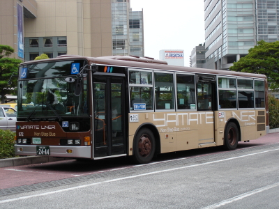 DSC02217_1.jpg