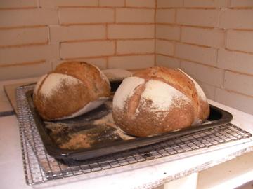 陶芸パン3