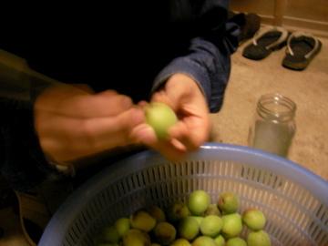梅干し作り2