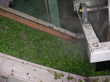 茶工場12