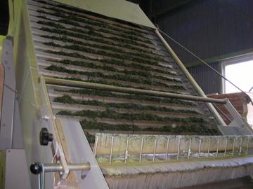 茶工場18