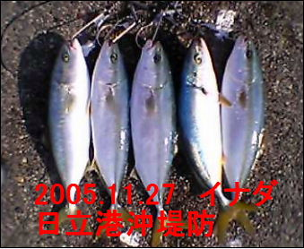 20051127.jpg