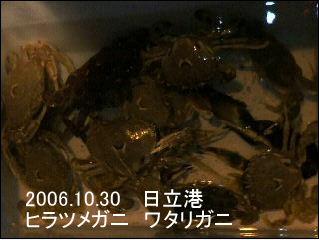 20061030.jpg