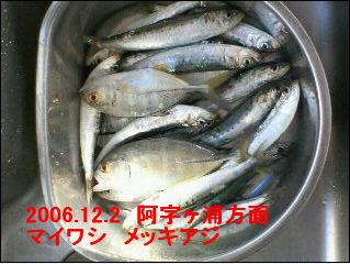 2006122.jpg