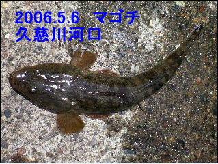 200656.jpg