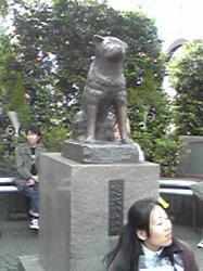 20080429155403