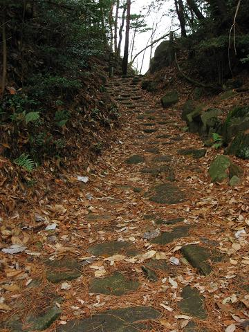 琵琶峠の頂付近