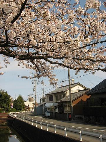 論田川と旧中山道