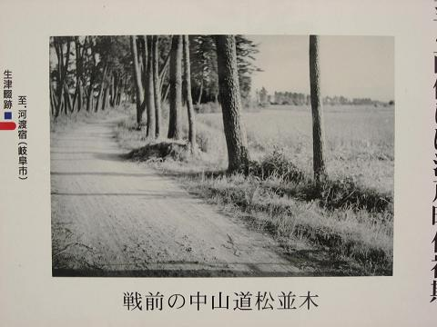 戦前の中山道松並木