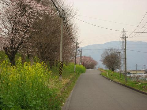 旧中山道と大島堤