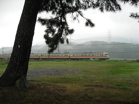 旧中山道松並木と東海道本線